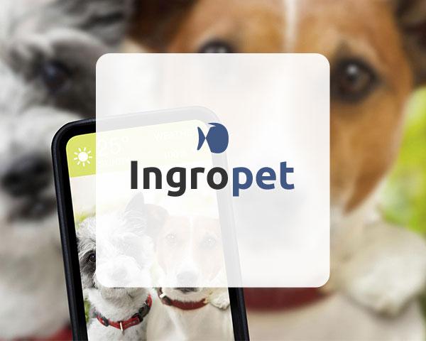 Ingropet – l' ecommerce per il tuo animale domestico
