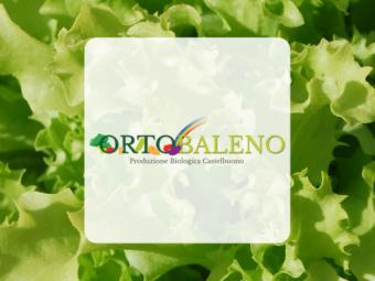OrtoBaleno – Produzione Biologica