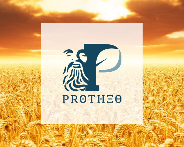 Protheo Fertilizers | Sito Web vetrina